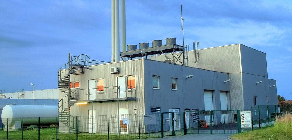 Energia da Biomassa - As 4 Energias Renováveis Mais Utilizadas em Portugal